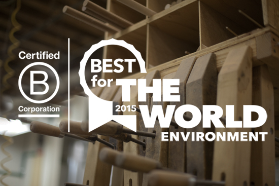 B Corp Best for the Environment