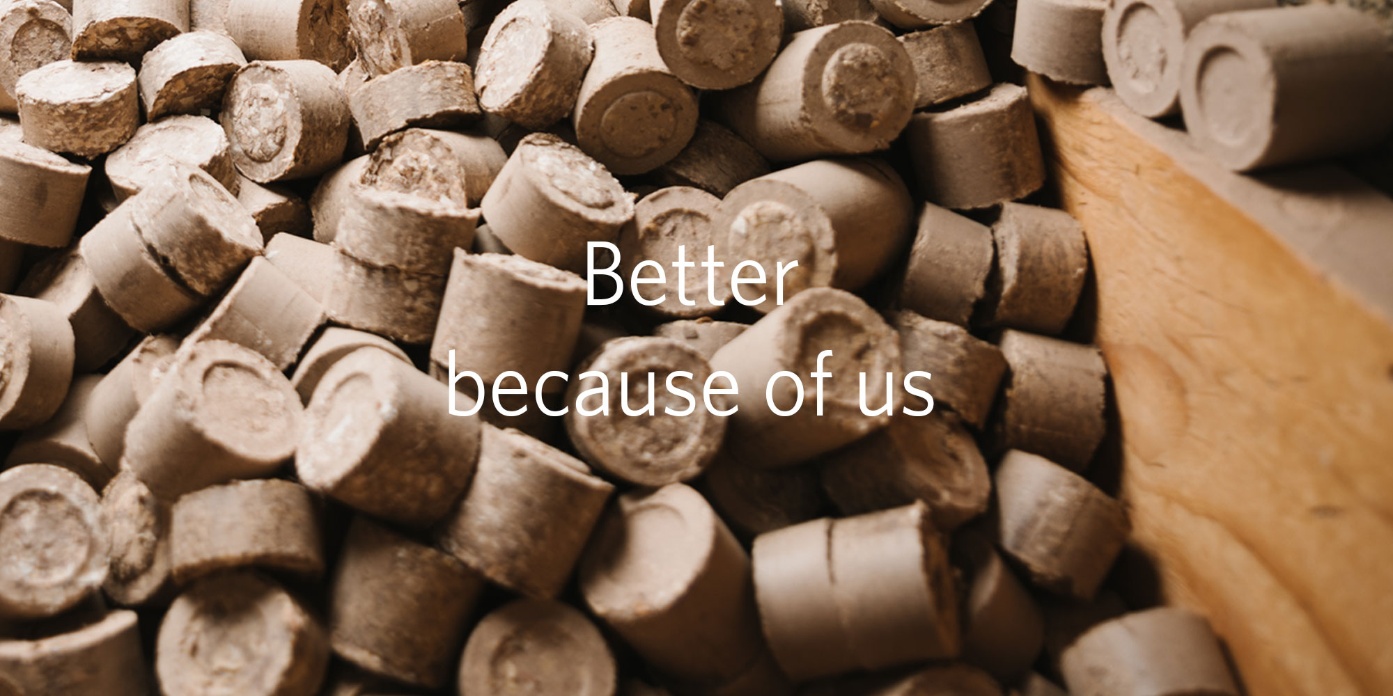 Banner image: Better because of us
